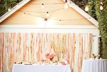 Eve & Mark's wedding / by Katie Laxton