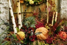 Fall Container Inspiration / by Laura Pole-Tree