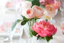 Flowers & Plants / by Aileen Allen // At Home in Love