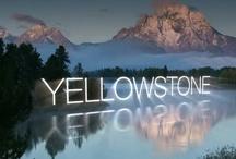 yellowstone , tetons - do again / by Kathi Gardner