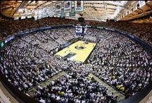 MSU Spartans Basketball / Michigan State Spartans Men's Basketball / by Michigan State Spartans