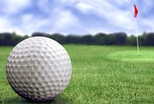 MSU Spartans Golf / Michigan State Spartans Golf Team / by Michigan State Spartans