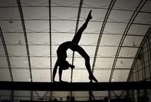 MSU Spartans Gymnastics / Michigan State Spartans Women's Gymnastics Team / by Michigan State Spartans