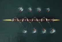 MSU Spartans Rowing / Michigan State Spartans Rowing Team / by Michigan State Spartans
