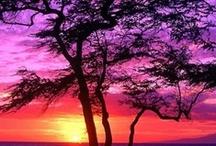 Beautiful Sunrises & Sunsets / by Melissa McKinley