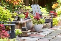 Back yard/patio project / by Kelly Skupnik