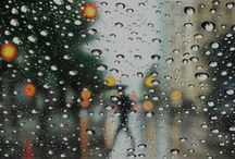 Rain / by Eleanor Lanyon