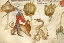 Medieval - manuscripts / by Eleanor Lanyon