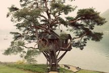 Treehouses / by Jorn Baas