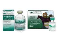 Top Products / by Heartland Veterinary Supply