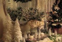 Christmas / by Ellen Thompson