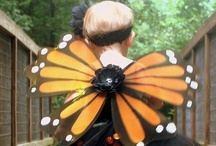 Butterfly / by Eileen Powers-Twichell