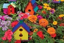 Garden / by Eileen Powers-Twichell
