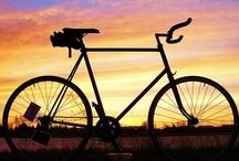 MOTION: Cycling / by Michael Dismuke