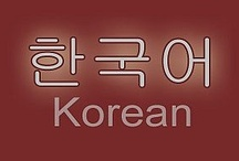 Korean as a Second Language / We can do it!  Fighting! / by Teresa Lindsey