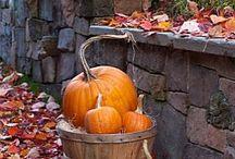 Halloween, Thanksgiving&Autumn. / by Helen Senesac