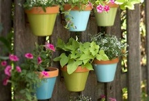 Garden & Landscaping  / by Mary | Sweet Little Bluebird