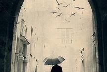 Solitude / by Nadia Kwok