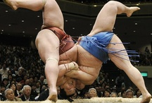 I love Japan / The sumo referee is as entertaining as the sumo wrestler . Glad I got to go one day and got to eat what the sumo eats. Well, I ate the green stuff and not the oily broth or chicken skins. A very fun experience. / by Mia (Jody Thorne)