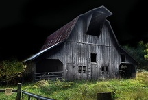 Weathered Ol' Barns / by Diane Seltzer