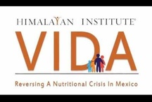 VIDA / Our newest campaign for Mexico. / by Himalayan Institute Humanitarian Projects
