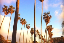 California<3 / by Ashℓey Vongbandith