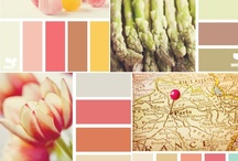 Color Schemes / by Flora Richards-Gustafson