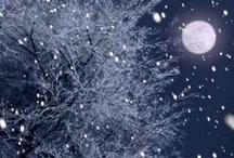 Let it Snow, Let it Snow, Let it Snow!!! / by Linda Hunter