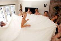 Wedding/ Shower Ideas / by Crystal Wilson