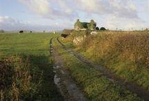 Ireland / by Cat Man Du