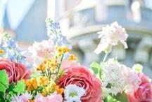 Springtime / Life Spring's Eternal / by Debbie Hill