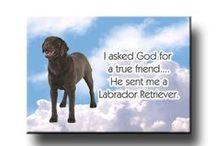 I <3 my Labrador Retrievers / by Angela Brooks