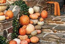 Autumn Bliss / by Regina Rosenquist