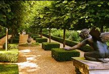 LOVELY GARDENS / by Berry Plume