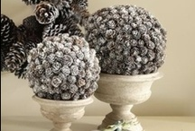 I Love Pinecones / by Tammy Seigler