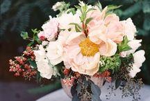 flowers / by Candace Kalasky