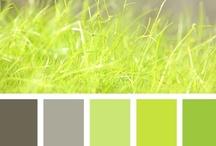 Decorating Ideas--Color Combos / by Blaise Lowe