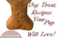 Treat Recipes  / by Jeffers Pet, Equine & Livestock Supplies