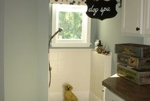 Pets / Ideas and funny pictures of pets / by Mary Axford