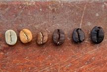 Coffee / by Carolyn Francis