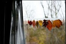 || autumn festivities || / || all things Autumn || / by Morgan Richelle