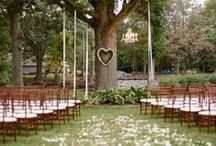 Weddings and Events / by Rachel Vasky