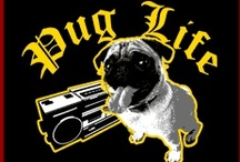 A day in a Pug's Life / by Mariza Says
