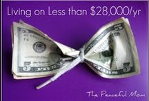 MONEY MATTERS / How to live within your means, make money & save for your future! / by Julie H.