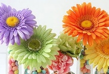 Beautiful Spring Decorating / by Angie @Echoes of Laughter