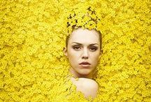 yellow! / i'm obsessed with this color. all things bright & cheery! / by Julie Ordoñez