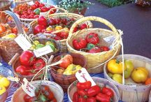 Business Ideas :: Growing Heirlooms - The Garden Project - Plant & Garden Sales / Ways we can make money from home.  / by Jennifer Kelly