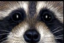 A - Animais / Animais de todos os tipos: insetos, quadrupedes, bípedes, mamíferos, e por aí afora! Amo animais... / by Véra Kartsch
