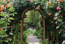 ♥ Doorways & Gateways ♥ / by Judy Robinson