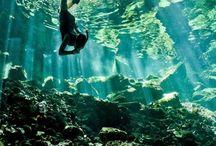 Ocean Depths / by sarah thielen